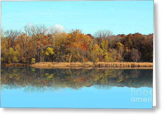 Still Waters 1 Greeting Card by Cedric Hampton