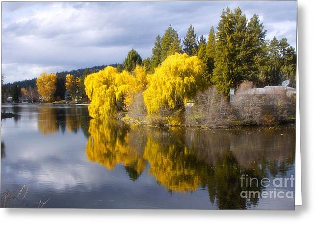 Stilled Waters Greeting Card