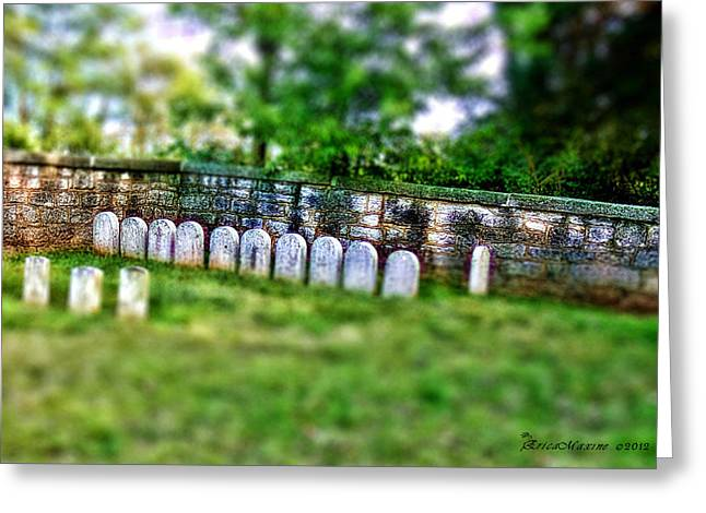 Stones River Battlefield Greeting Card by EricaMaxine  Price