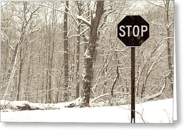 Stop Snowing Greeting Card by John Stephens