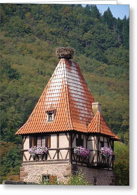 Stork Nest In Alsace France Greeting Card by Christopher Mullard