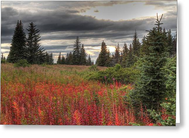 Greeting Card featuring the photograph Storm Clouds In Fall by Michele Cornelius