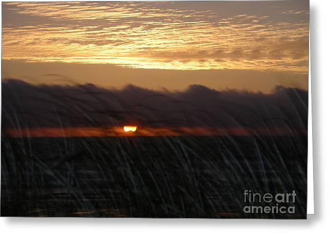 Greeting Card featuring the photograph Storm Coming by Cynthia Marcopulos
