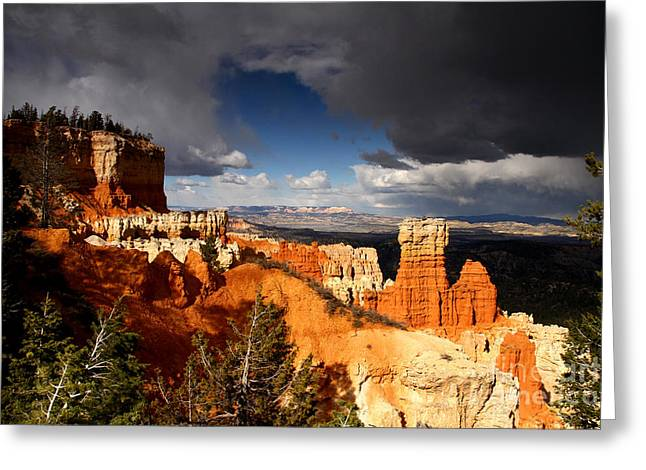 Storm Over Bryce Canyon Greeting Card by Butch Lombardi
