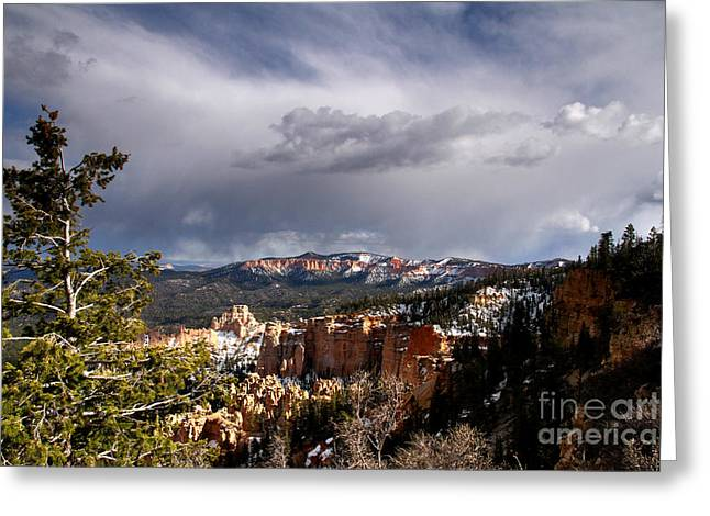 Storm Over The South Rim Bryce Canyon Greeting Card by Butch Lombardi