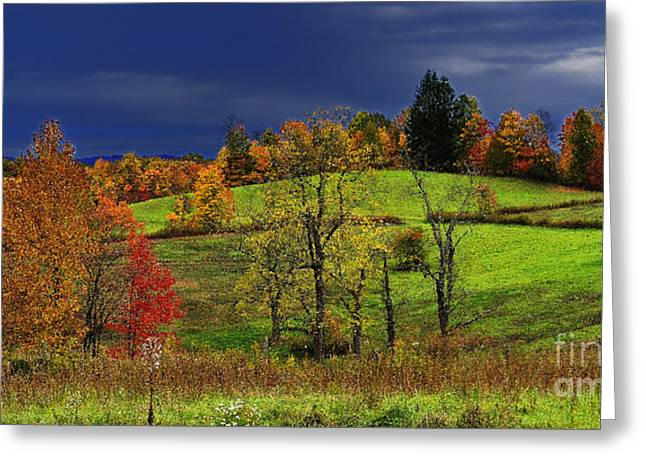 Stormy Autumn Morning Greeting Card by Thomas R Fletcher