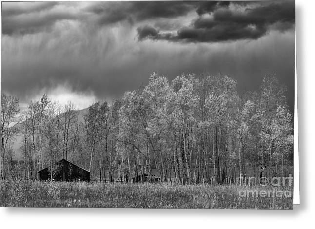 Stormy Morning In The Grand Tetons Greeting Card