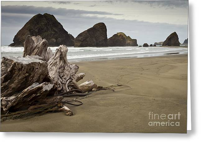 Stormy Oregon Coast Greeting Card