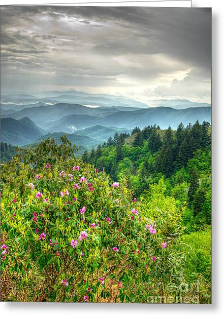 Stormy Spring Skies Greeting Card by Bob and Nancy Kendrick