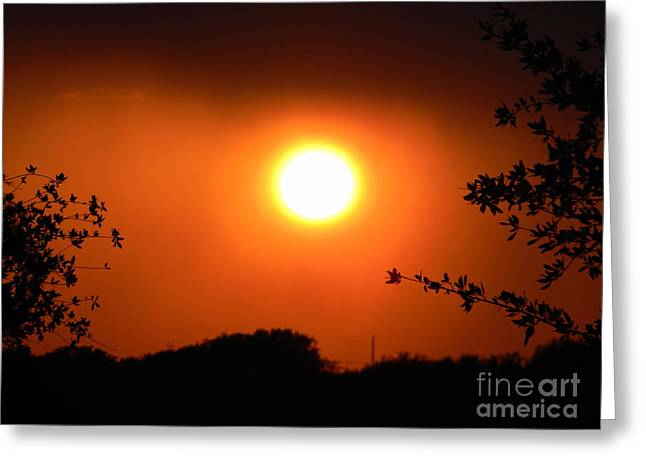 Stormy Sunset Greeting Card by Kimberly Dawn Hendley