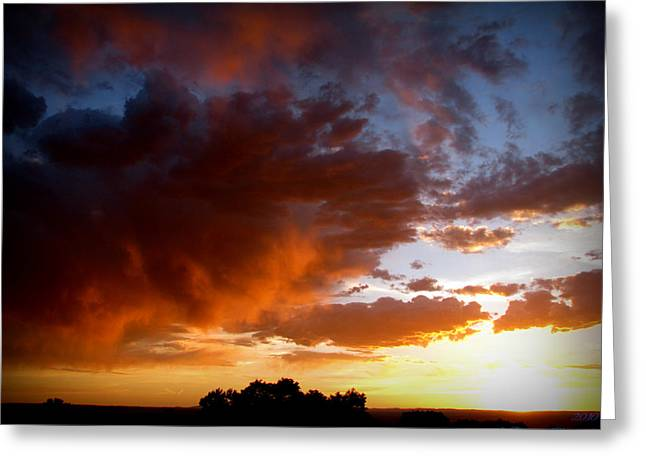Stormy Sunset Over A Tree Canopy Greeting Card by Aaron Burrows