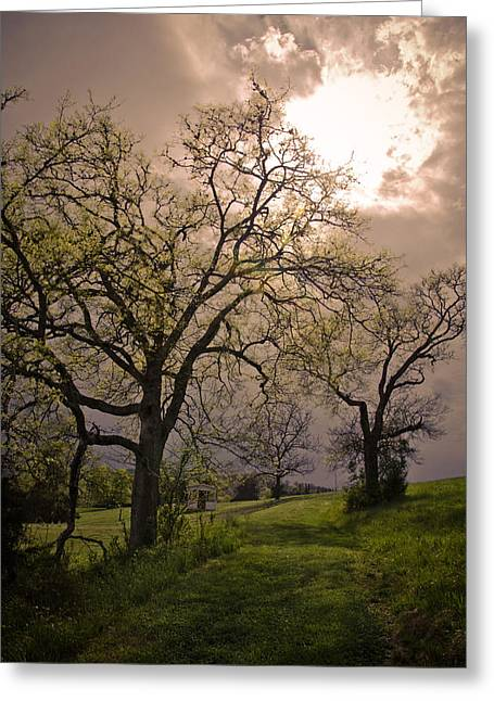 Stormy Weather Greeting Card by Victoria Lawrence