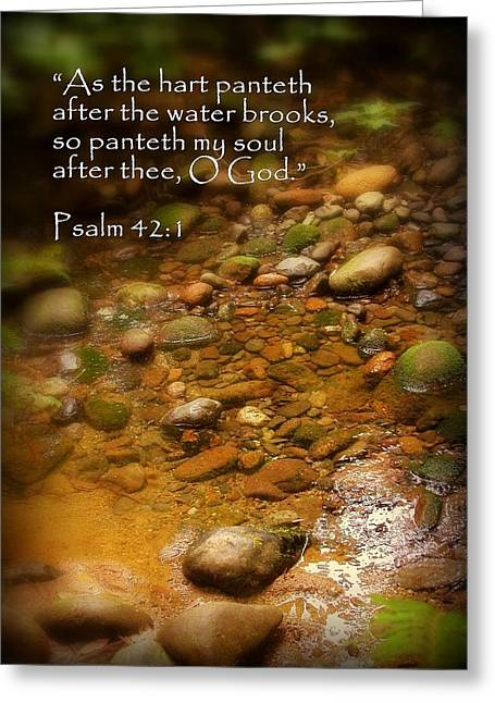 Stream Bed Psalm 42 Greeting Card by Cindy Wright