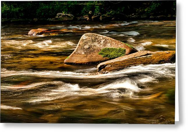 Stream Greeting Card by Christopher Holmes