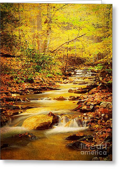 Streams Of Gold Greeting Card by Darren Fisher