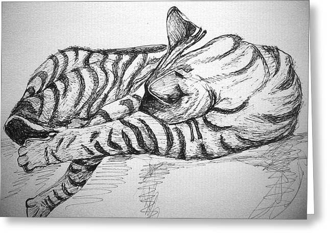 Stripes Greeting Card by Mary Schiros