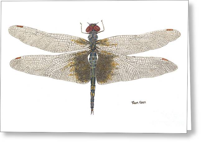 Greeting Card featuring the painting Study Of A Female Black Saddlebags by Thom Glace
