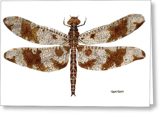 Greeting Card featuring the painting Study Of A Female Filigree Skimmer by Thom Glace
