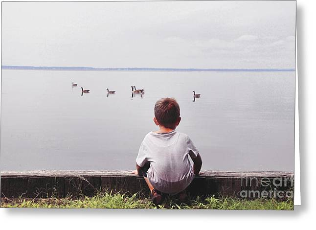 Studying Geese Greeting Card by Tommy  Urbans