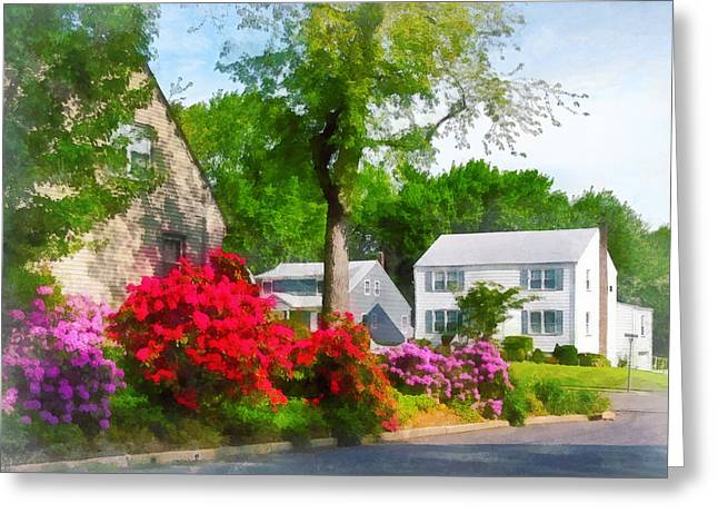 Suburban Azalea Garden Greeting Card by Susan Savad