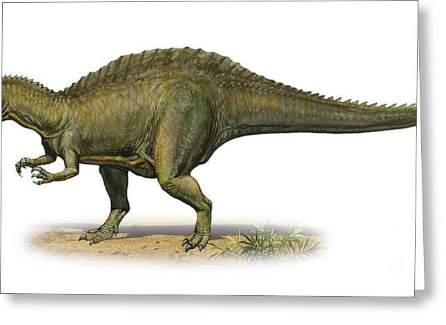 Suchomimus Tenerensis, A Prehistoric Greeting Card by Sergey Krasovskiy