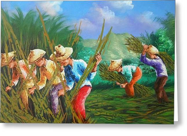 Sugar Cane Harvest Greeting Card by Pretchill Smith