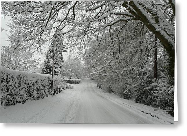 Sugar Road II Greeting Card by Rdr Creative