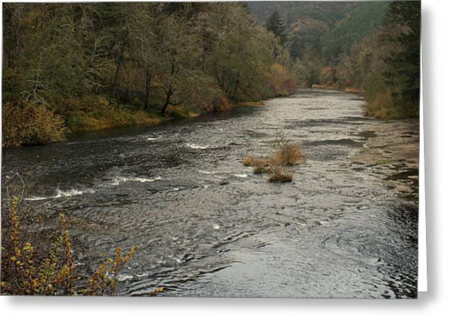 Suislaw River Panorama Greeting Card by Mary Gaines