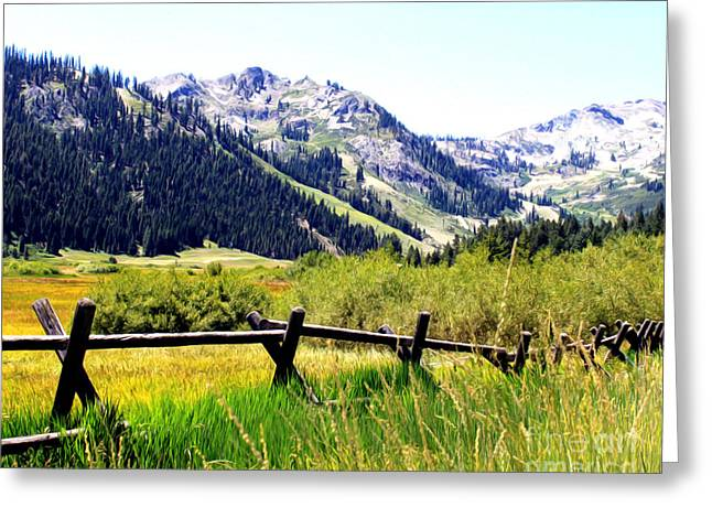 Summer At Squaw Valley Greeting Card by Anne Raczkowski