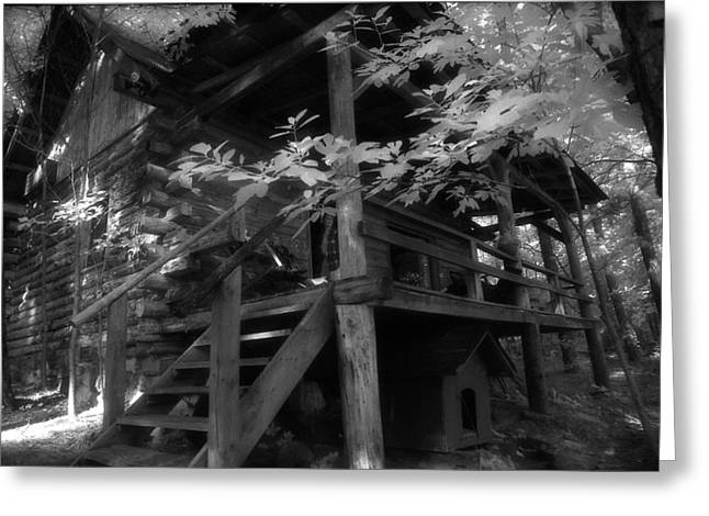Summer At The Cabin Greeting Card by Greg Kopriva