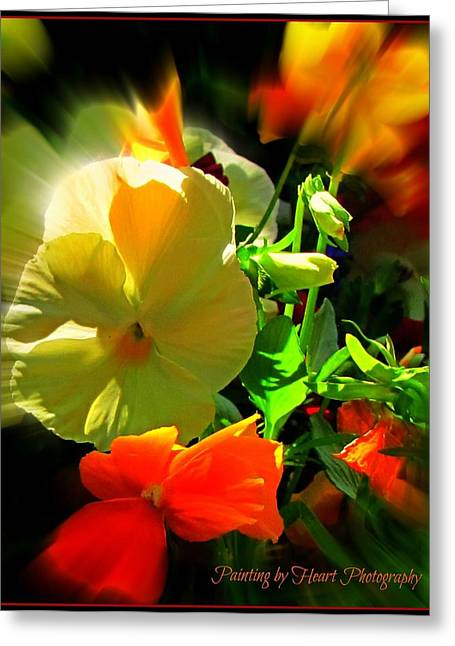 Greeting Card featuring the photograph Summer Bloom by Deahn      Benware