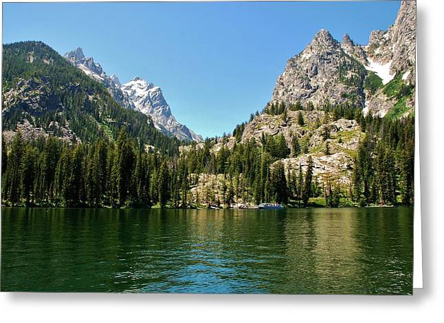 Summer Day At Jenny Lake Greeting Card by Dany Lison