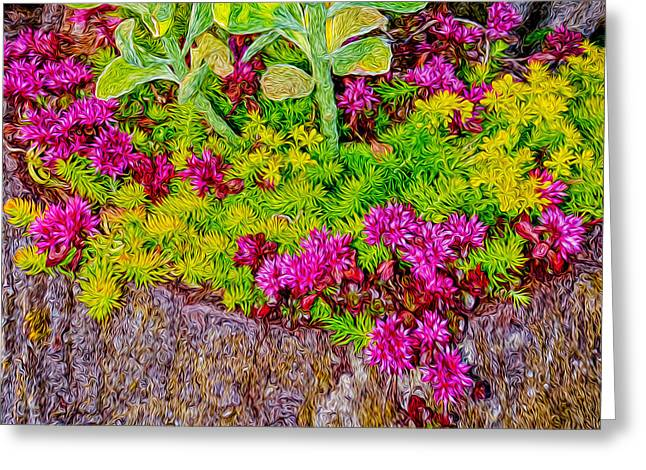 Summer Delight Greeting Card by Ken Stanback