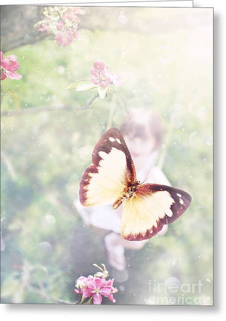 Summer Dreams Greeting Card