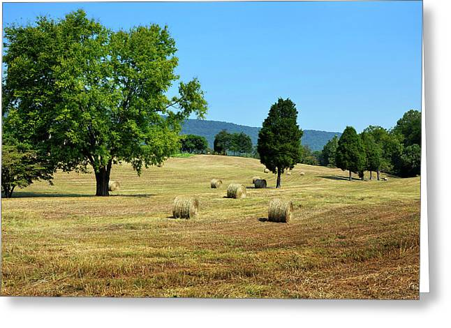 Greeting Card featuring the photograph Summer Field by Paul Mashburn