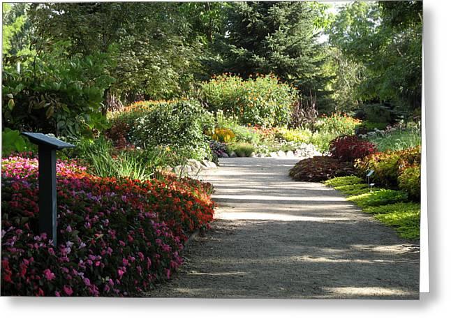 Summer Garden Path Greeting Card