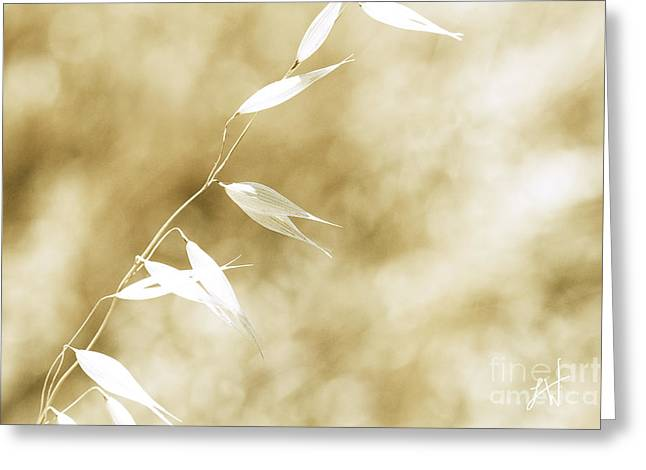 Greeting Card featuring the photograph Summer Grass by Artist and Photographer Laura Wrede