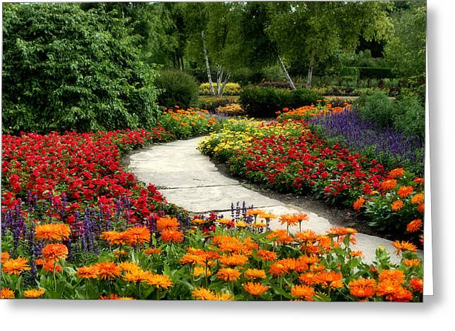 Summer In Cantigny 1 Greeting Card