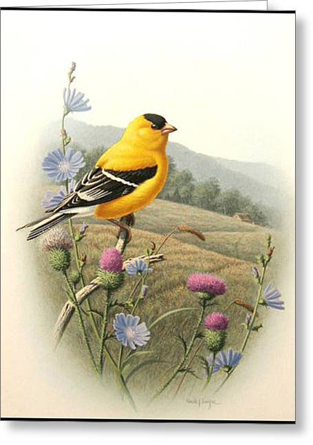 Summer Morning Greeting Card by Ron Louque
