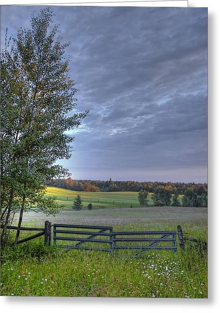 Summer Pasture Greeting Card by Heather  Rivet