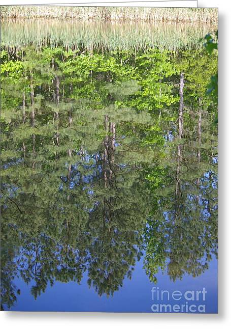 Greeting Card featuring the photograph Summer Reflection by Tannis  Baldwin