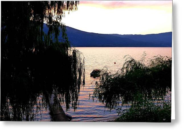Summer Solitude Greeting Card by Will Borden