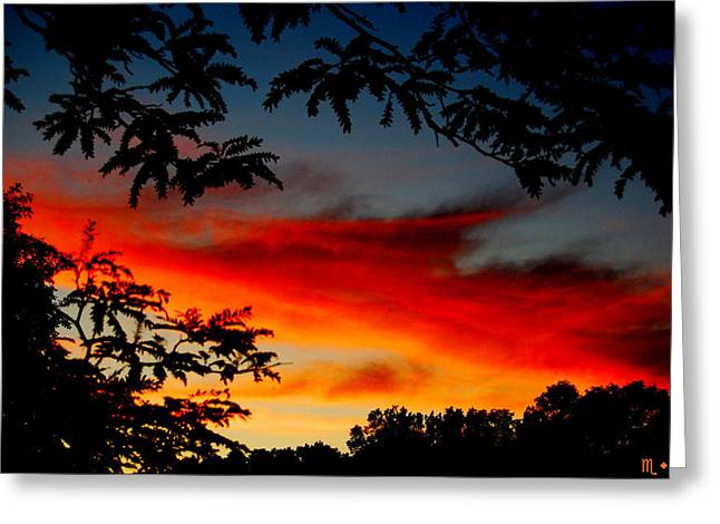 Summer Sunset Greeting Card