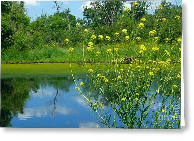 Greeting Card featuring the photograph Summer's Glory by Jim Sauchyn