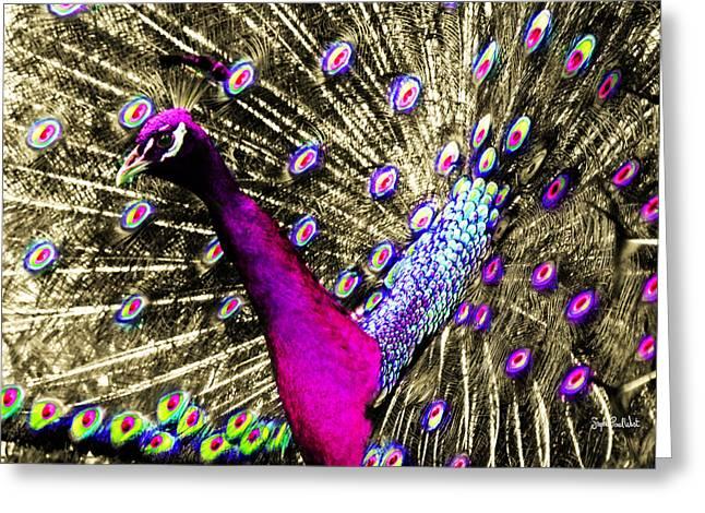 Sun Beam Peacock Greeting Card by Stephen Paul West