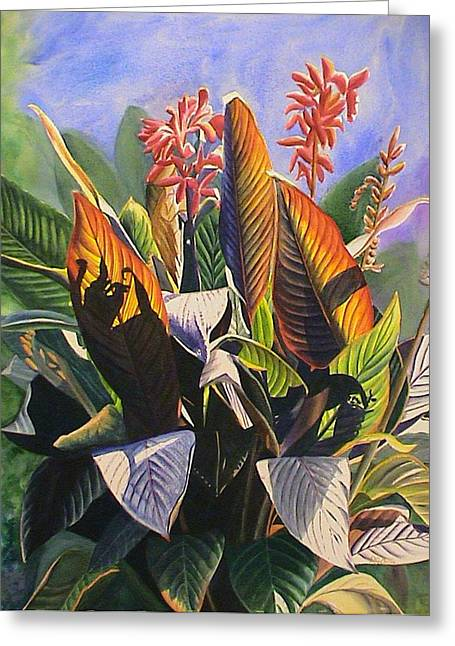 Sun Kissed Cannas Greeting Card