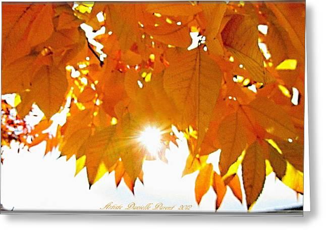 Sun Kissed  Deciduous Greeting Card by Danielle  Parent