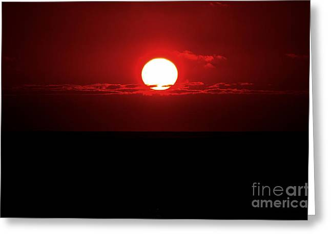 Sun Greeting Card by Pravine Chester