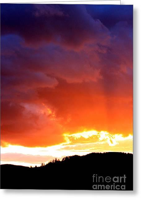 Sun Rays Greeting Card by Nick Gustafson