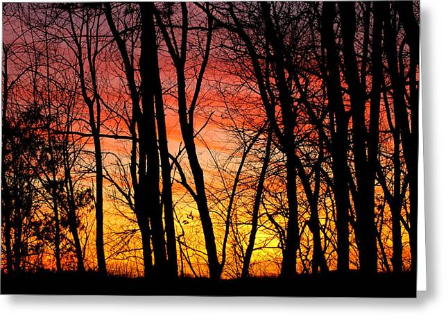 Sun Set Of Fire Greeting Card